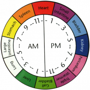 naet body meridian clock